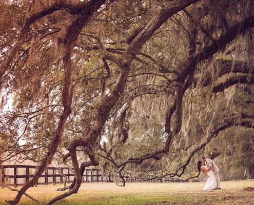Boone Hall Plantation Weddings