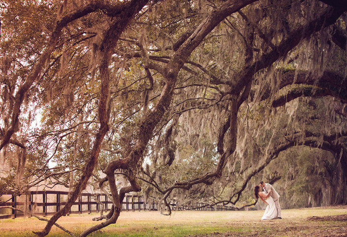 Venues charleston wedding photography boone hall plantation junglespirit Images