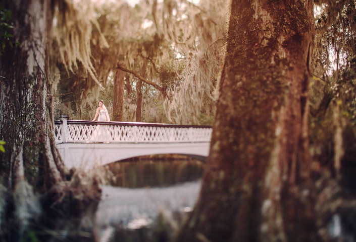 Long White Bridge at Magnolia Plantation
