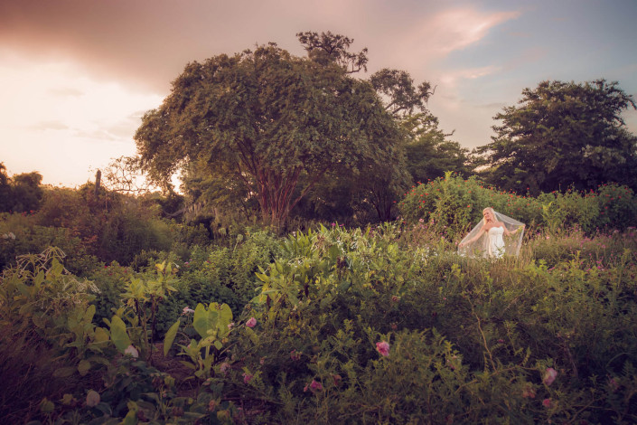 Boone Hall Plantation Garden