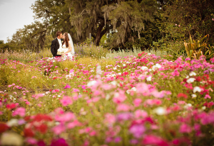 weddings at Boone Hall Plantation