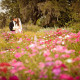 weddings at Boone Hall Plantation