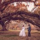 Under the Grand Oak