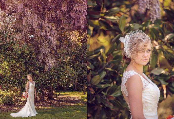 Bridal portrait under wisteria