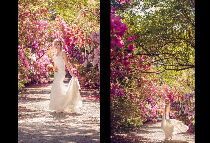 Bridal Portraits in the Avenue of Azaleas