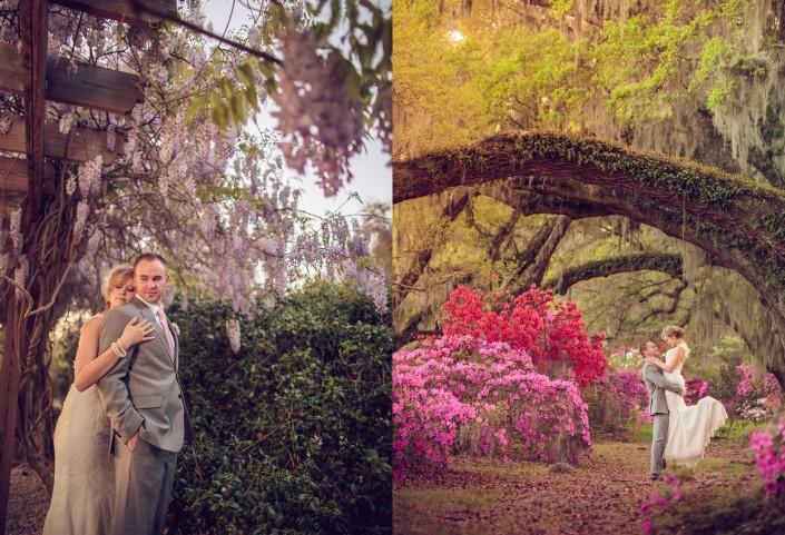 Azaleas, Oaks, and Wisteria