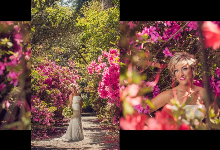 Portraits in the Avenue of Azaleas