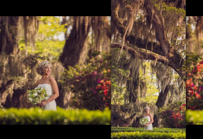 Portraits under the Oaks