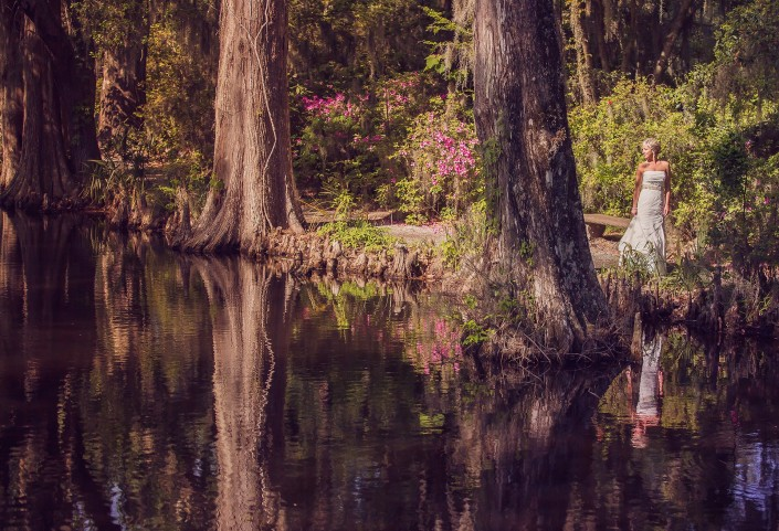 The Bride and the Cypress Knees