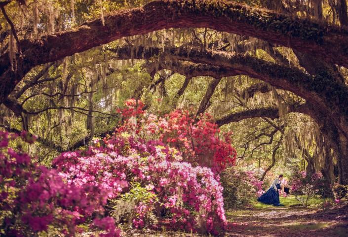 Magnolia Plantation Azaleas and Oaks Wedding