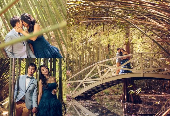 Bamboo Grove at Magnolia Plantation