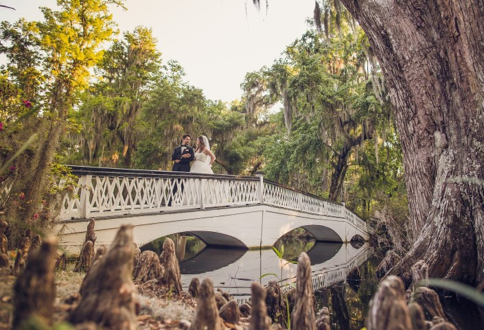 Long White Bridge and Cypress Knees