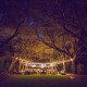 Magical reception in the Oak Boulevard at Charlestowne Landing
