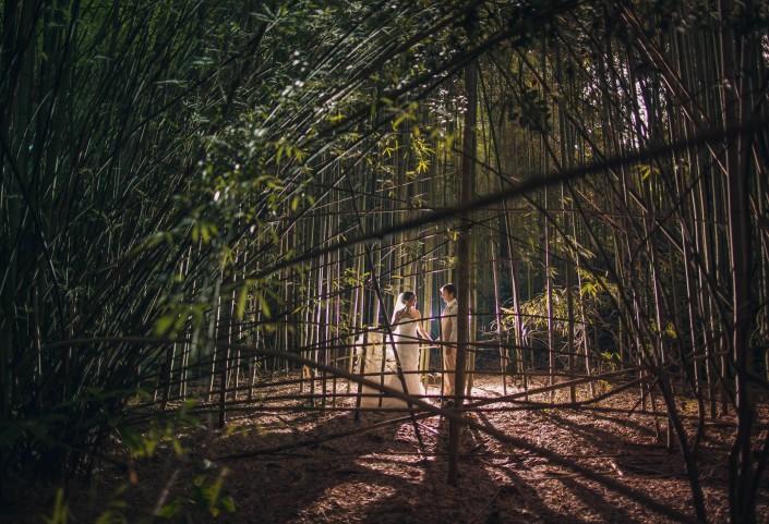 Magnolia Plantation Bamboo Photograph