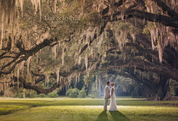 Magnolia Plantation Wedding Photographer