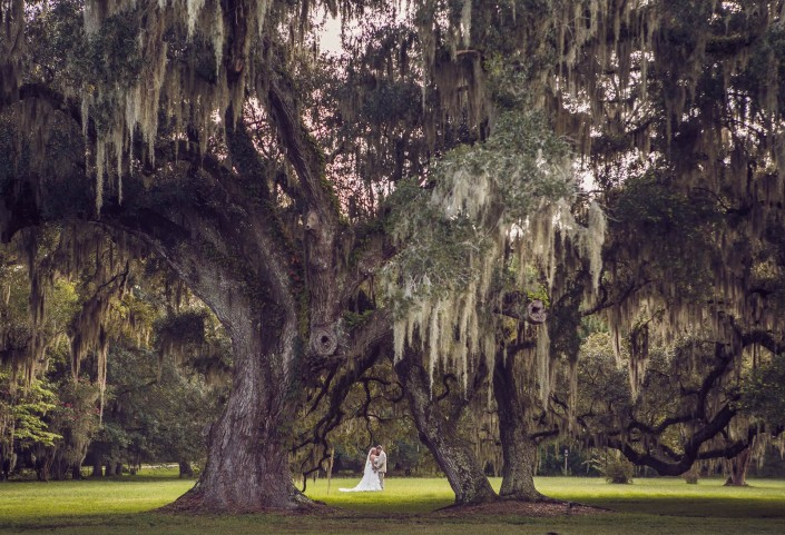 Plantation Wedding Photos
