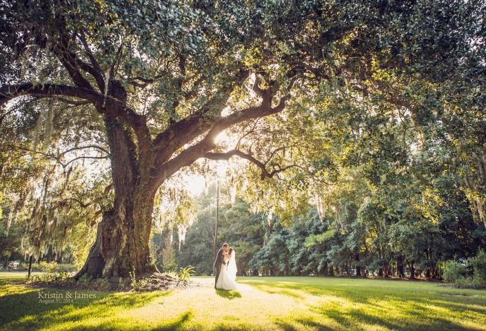 Magnolia Plantation Ancient Oak Wedding