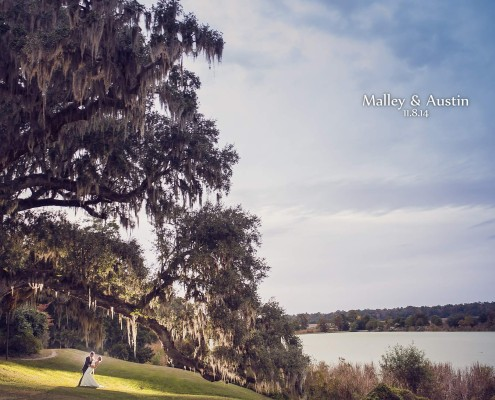 Wedding at Middleton Place Plantation