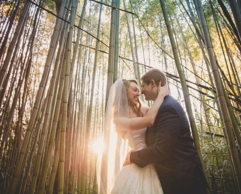 Elopement at Magnolia Plantation in Charleston South Carolina
