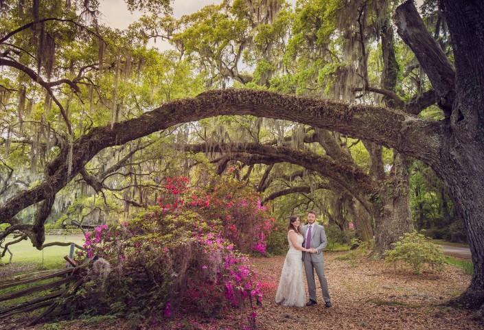 Wedding at Magnolia Plantation and Gardens
