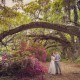 Wedding at Magnolia Plantation and Gardens