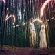 bamboo light painting