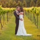 Vineyard Bride and Groom