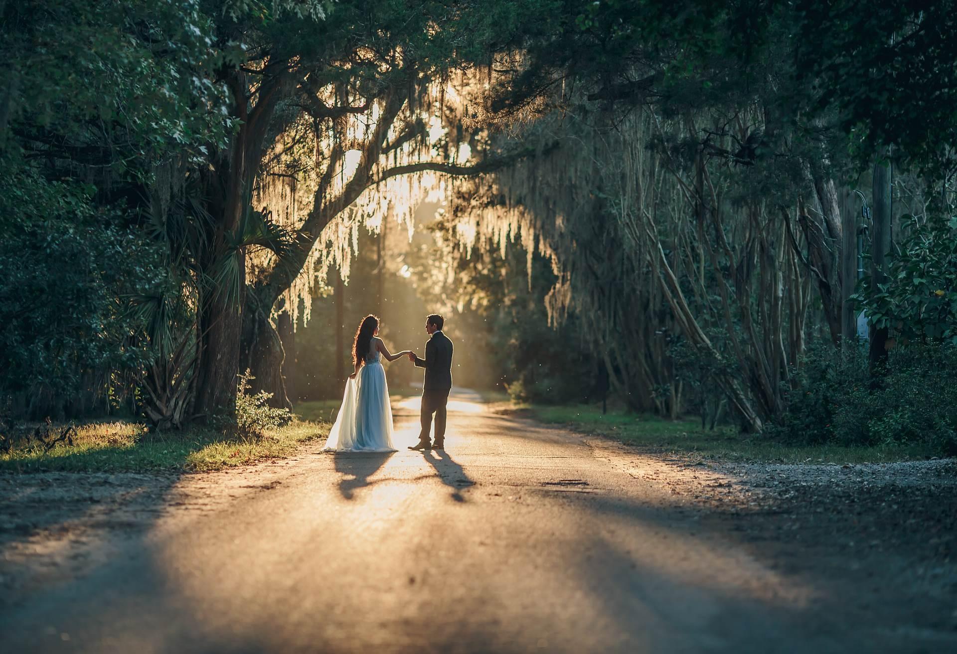 Magnolia Plantation Oaks