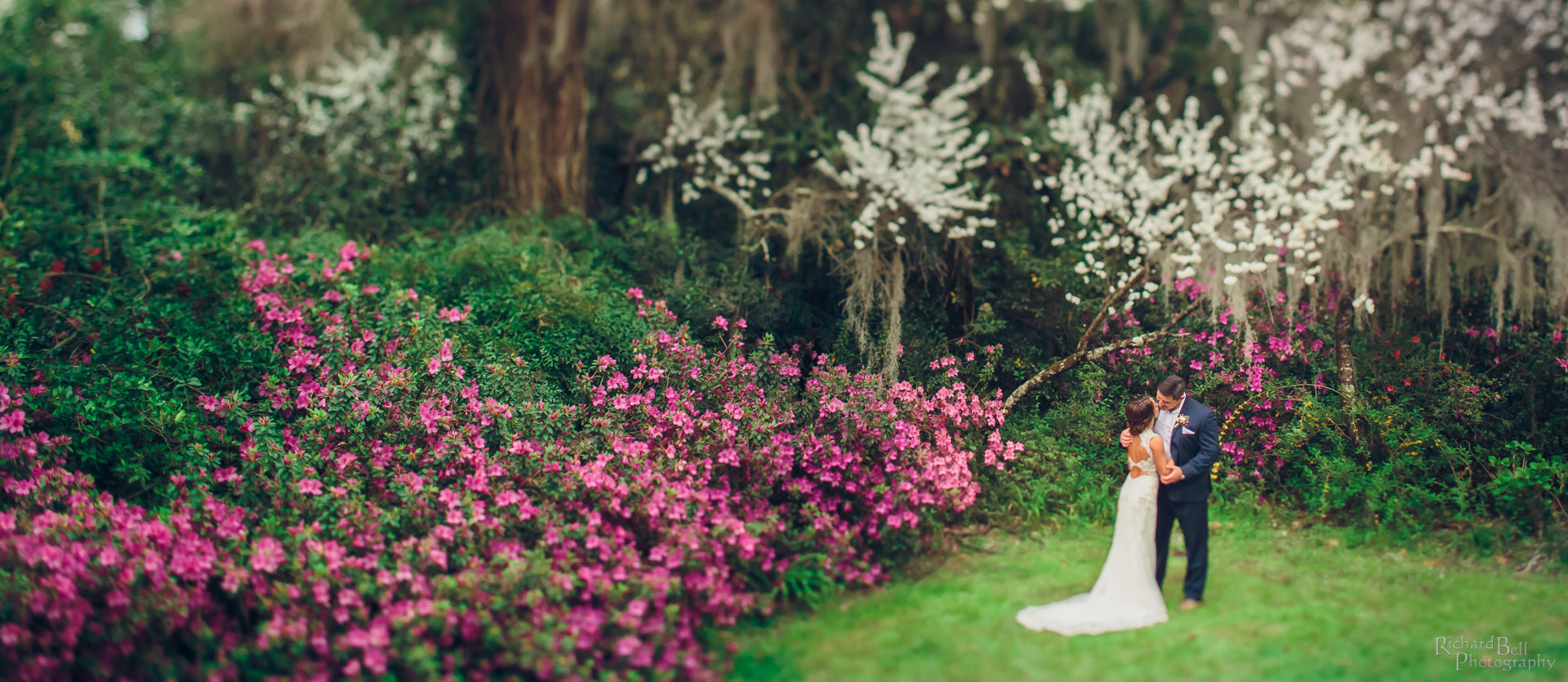 Bride and Groom at Magnolia Plantation