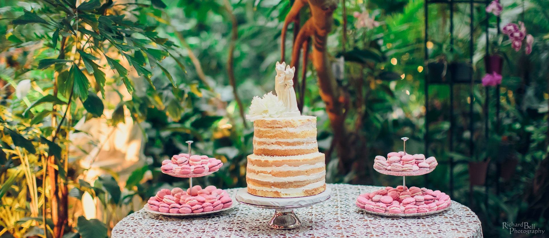 Cake at Conservatory