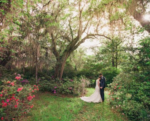 King at Magnolia Plantation