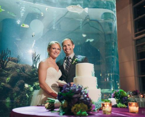 Irvin Aquarium