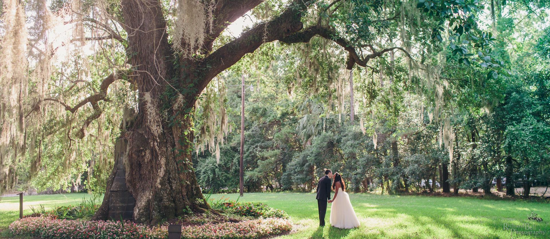 Serena and Matt under tree