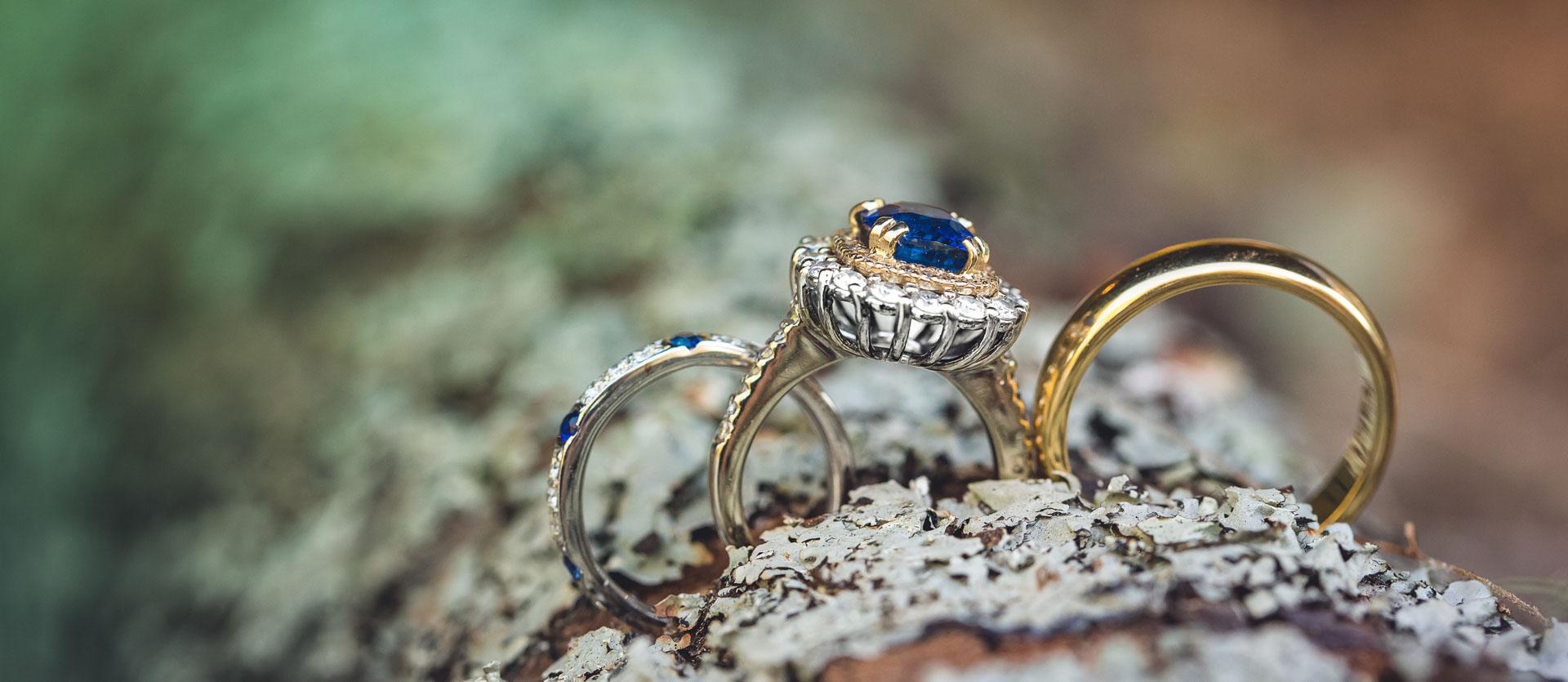Gardner Rings