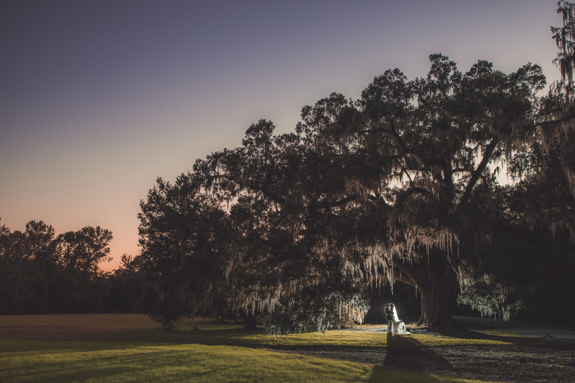Magnolia Plantation Wedding Oaks
