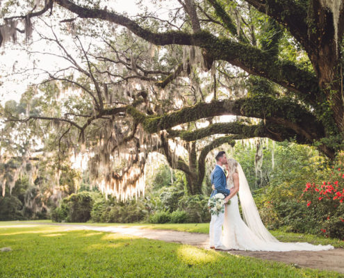 Magnolia Plantation Photographer