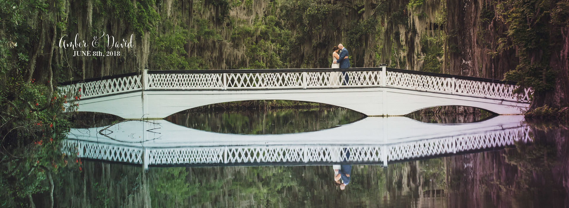 Magnolia Plantation Photography